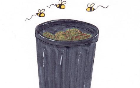 Bees at Pali