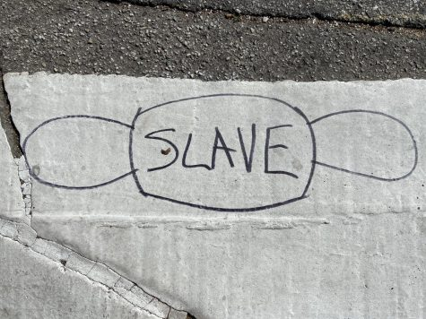 Anti-Mask and Anti-Vaccine Graffiti Appears in the Palisades Village